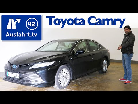 Loyalty for Toyota Camry SE/XSE 2018 2019 Gloss Black