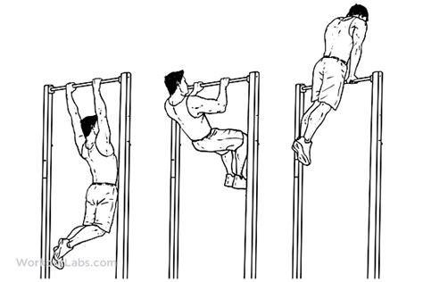Muscle Up   Illustrated Exercise guide - WorkoutLabs